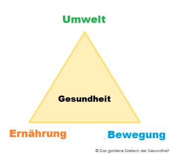 das-goldene-dreieck-der-gesundheit