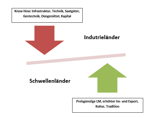 Grafik word